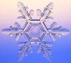 http://www.metodolog.ru/00387/011902-a133ax.jpg